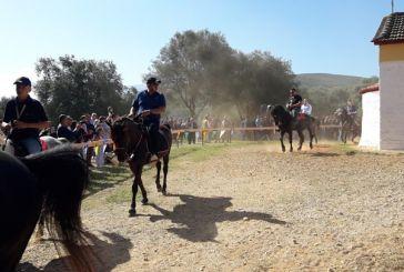 Τραγικό θάνατο βρήκε άλογο λίγο πριν το έθιμο με τους καβαλάρηδες στη Βόνιτσα