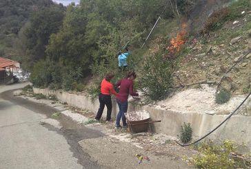 Let's do it Greece: Εθελοντικές δράσεις καθαρισμού και φύτευσης λουλουδιών στη Σαργιάδα Αγρινίου (φωτο)