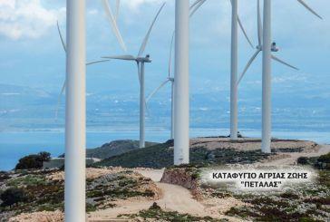 Δυσαρέσκεια στους κατοίκους της Κεχρινιάς για το αιολικό πάρκο