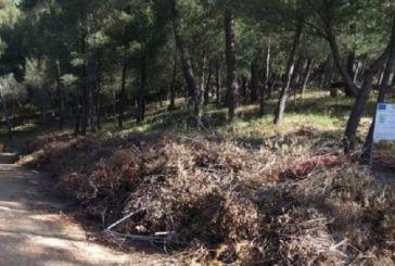 Σταύρος Καμμένος: «Εγκληματική αμέλεια του δήμου Αγρινίου στο δάσος του Αγίου Χριστοφόρου»