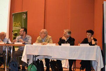 Όλες οι εξελίξεις για την ελιά αναλύθηκαν σε εκδήλωση στο Μεσολόγγι