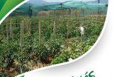 Ξεκίνησε η νέα καλλιεργητική περίοδος για τους ωφελούμενους του δημοτικού λαχανόκηπου Αγρινίου