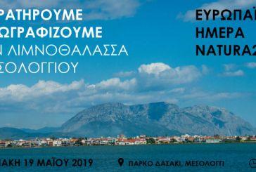 Ημέρα Natura 2000: «Παρατηρούμε και Ζωγραφίζουμε την Λιμνοθάλασσα Μεσολογγίου»