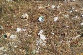 Πολλά τα παράπονα για την καθαριότητα στον κόμβο Αγίου Δημητρίου