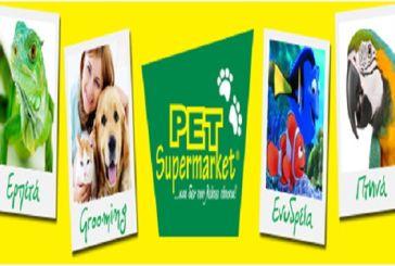 Ποιες τροφές απαγορεύεται να δώσετε στον σκύλο και την γάτα σας – Τι να επιλέξετε!