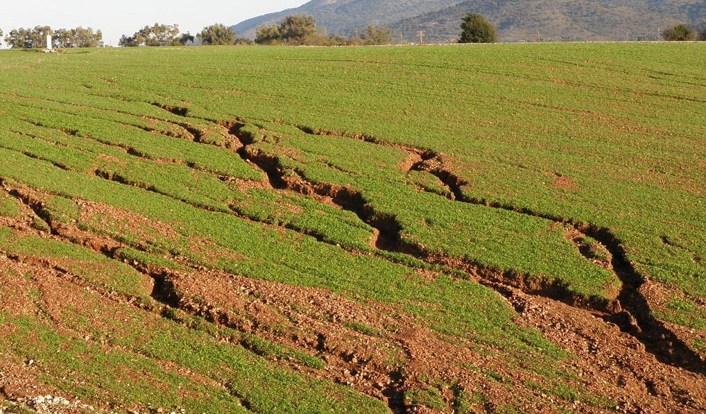 Οικολογική Δυτική Ελλάδα: Δεν είναι θεομηνία, είναι ανθρώπινη επιλογή: