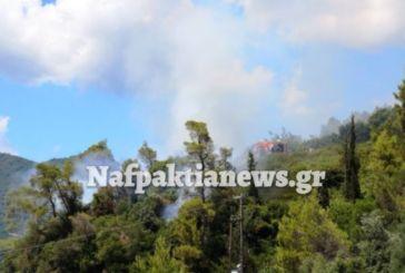 Πυρκαγιά στο Τρίκορφο Ναυπακτίας – Την περιόρισαν οι πυροσβέστες
