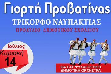 «Γιορτή προβατίνας» την Κυριακή 14 Ιουλίου στο Τρίκορφο Ναυπακτίας