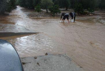 Το ΤΕΕ Αιτωλοακαρνανίας προσκαλεί για συμμετοχή σε επιτροπές καταγραφής ζημιών στον Δήμο Μεσολογγίου