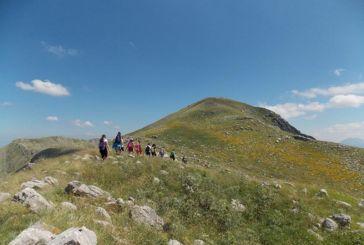 Ορειβατικός Σύλλογος Αγρινίου: Το πρόγραμμα δραστηριοτήτων για το 2020