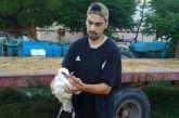 Περίθαλψη νεαρού λευκοπελαργού στα Καλύβια (φωτο)