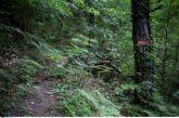 Γιάννενα: Αίσιο τέλος σε θρίλερ εξαφάνισης – Τον βρήκαν αστυνομικοί της Βόνιτσας