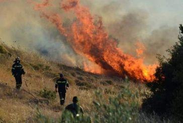 Φωτιά χθες και στη Στάνο Αμφιλοχίας