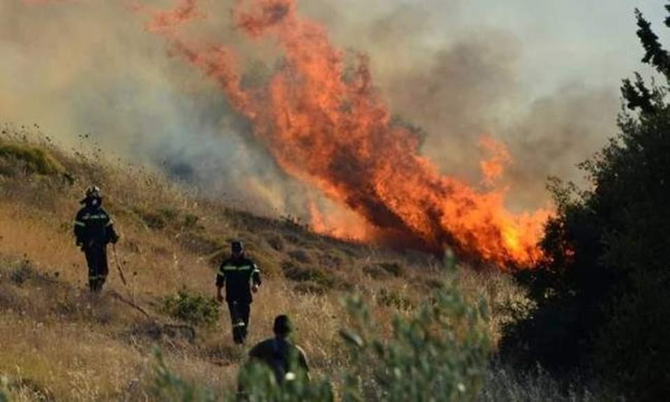 Ελέγχεται η φωτιά κοντά στην Παλαιομάνινα – κάηκαν περίπου 50 στρέμματα