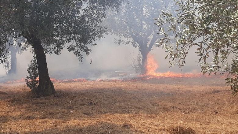 Κινητοποίηση για ύποπτη φωτιά κοντά στη Λεπενού