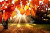 Καλοκαίρι τέλος – Σήμερα, 23 Σεπτεμβρίου, ξεκινάει το φθινόπωρο