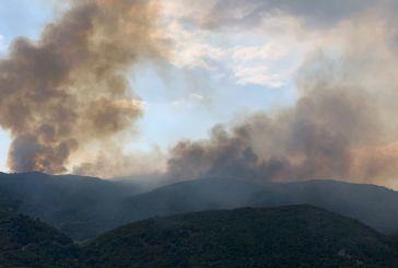 Μεγάλη πυρκαγιά κοντά στη Σκουτεσιάδα