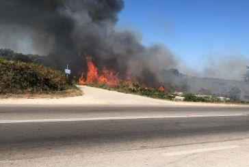 Πρέβεζα: Μεγάλη φωτιά κοντά στον αρχαιολογικό χώρο της Νικόπολης