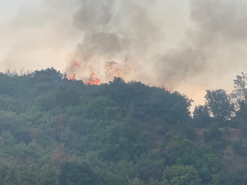 Υψηλός ο κίνδυνος πυρκαγιάς το Σάββατο 22 Αυγούστου στην Αιτωλοακαρνανία