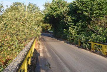 Γέφυρας Αβόρανης : συν τοις άλλοις και στενότητα λόγω βλάστησης