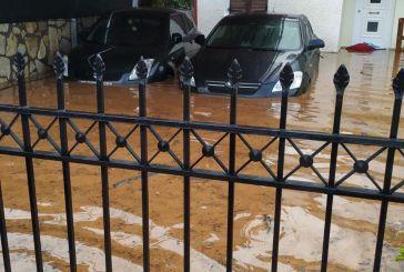 Καταστροφές στις Οινιάδες από τις πλημμύρες