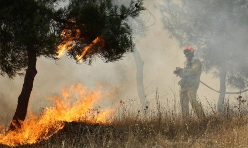 Tραγωδία στη Μπούζα Αιτωλικού: απανθρακώθηκε ηλικιωμένος την ώρα που έκαιγε ξερά χόρτα