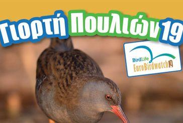 Ο Φ.Δ. Λιμνοθάλασσας – Ακαρνανικών για την Ευρωπαϊκή Γιορτή των Πουλιών στο Αγρίνιο