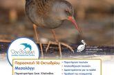 Μεσολόγγι: Εκδήλωση για την Ευρωπαϊκή Γιορτή Πουλιών