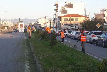 Αγρίνιο: Εργασίες καθαρισμού κατά μήκος της εθνικής οδού (φωτο)