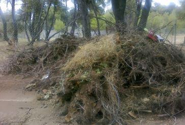 Ανακύκλωση των πράσινων αποβλήτων του δήμου Αγρινίου