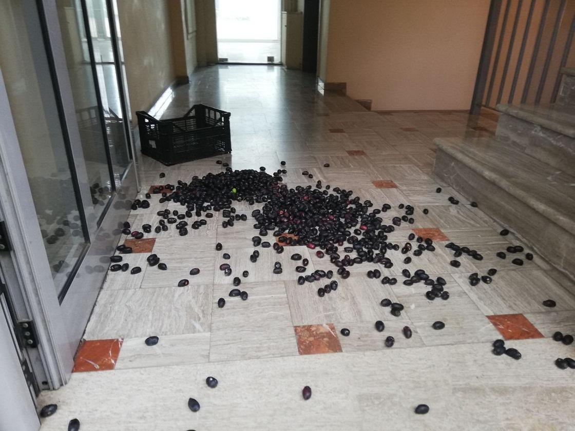 Κινητοποίηση αγροτών στον ΕΛΓΑ Αγρινίου: κατέθεσαν αιτήματα και έριξαν ελιές… (φωτο)