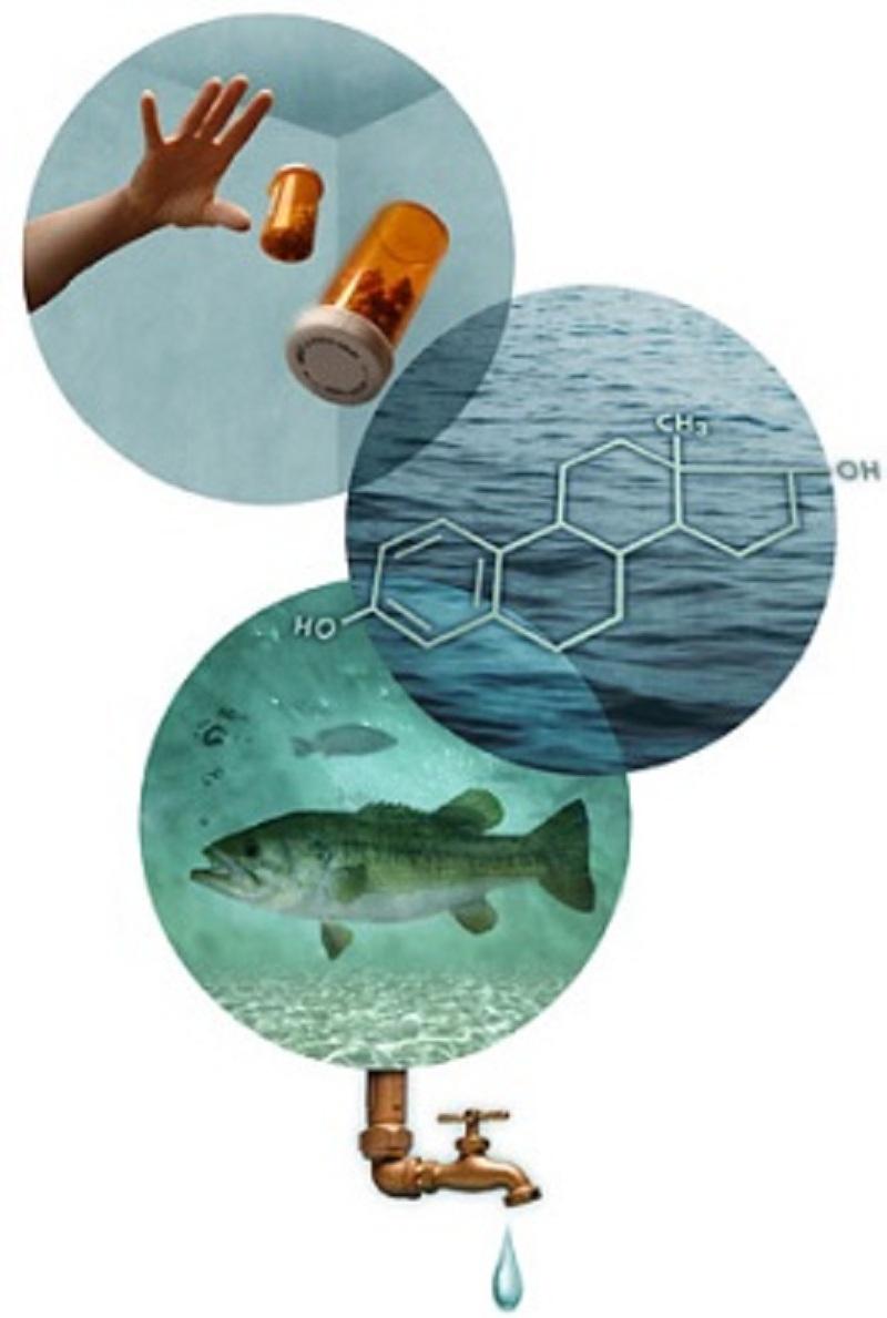 """""""Φάρμακα"""" & σοβαρές επιπτώσεις που έχουν στο περιβάλλον"""