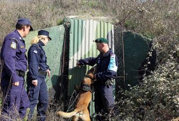 ΕΛΑΣ: Έρχονται προσλήψεις 800 συνοριοφυλάκων