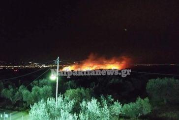 Πυρκαγιά στα όρια Αντιρρίου και Μακύνειας (φωτο & video)