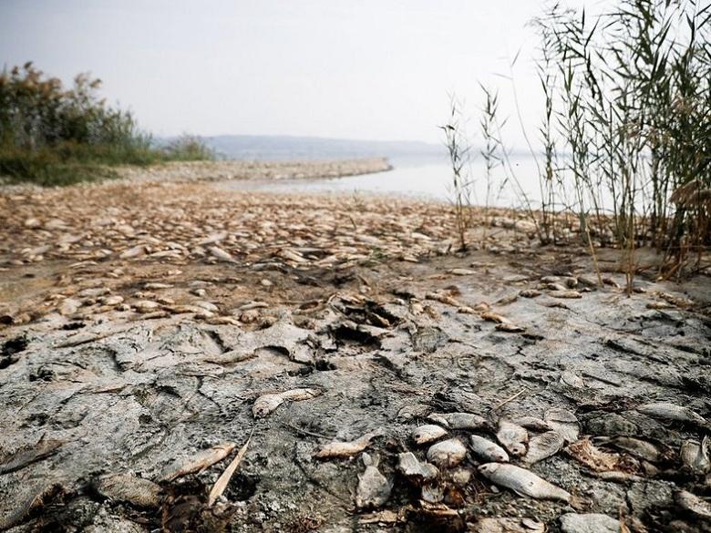 Ξηρασία και ερημοποίηση της Δυτικής Ελλάδας λόγω κλιματικής αλλαγής