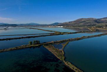 Ψήφισμα ενάντια στο νέο περιβαλλοντικό νόμο από την Α'ΕΛΜΕ