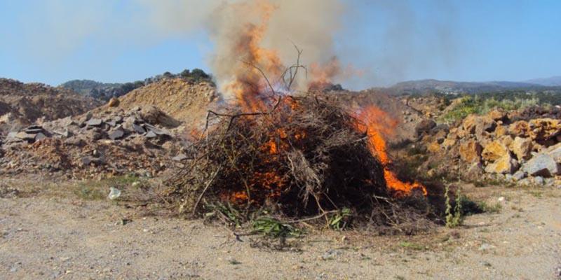 Συστάσεις σε αγρότες να αποφύγουν το κάψιμο γεωργικών υπολειμμάτων στη Δυτική Ελλάδα