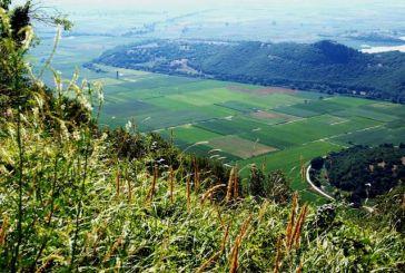 Ζητείται για αγορά κτήμα 15 στρεμμάτων στην Αιτωλοακαρνανία