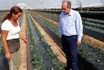 Συνδυασμός Κατσιφάρα: προτάσεις για τη στήριξη του πρωτογενή τομέα