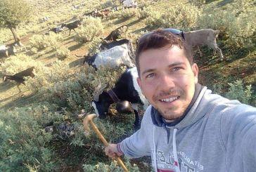 Τη στήριξη των κτηνοτρόφων των ορεινών δήμων Αργιθέας, Αγράφων και Καραΐσκάκη ζητούν οι δήμαρχοι