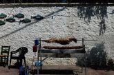 Η Παγώνη επιμένει: Ξεχνάμε το Πάσχα – Θα σουβλίσουμε στις ταράτσες και στα μπαλκόνια