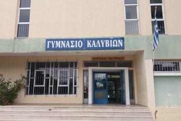 Δωρεά υγειονομικού υλικού στο Γυμνάσιο Καλυβίων