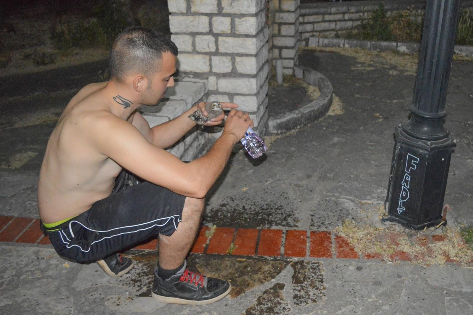 Διάσωση μωρού κουκουβάγιας στο Παναιτώλιο (φωτο)