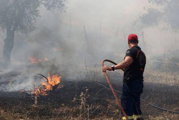 Δοίκηση Αιτωλοακαρνανίας της Πυροσβεστικής: τα πρόστιμα για παραβάσεις της πυροπροστασίας