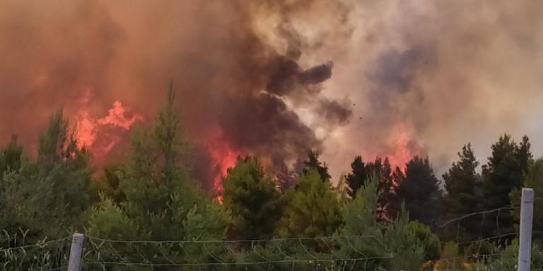 Μεγάλη φωτιά στο Μαρτίνο -Διακόπηκε η κυκλοφορία στην Εθνική οδό Αθηνών – Λαμίας