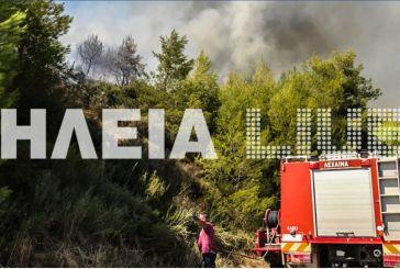 Και Αιτωλοακαρνάνες πυροσβέστες σε μάχη με τις φλόγες στην Ηλεία