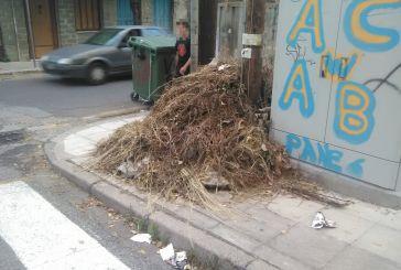 Αγρίνιο: Τα ξερόχορτα και τα σκουπίδια δίπλα από το ΚΑΦΑΟ ημέρα 8η!
