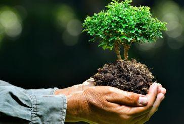 5 Ιουνίου- Παγκόσμια Ημέρα Περιβάλλοντος: Ράβε ξήλωνε δουλειά να μη σου λείπει