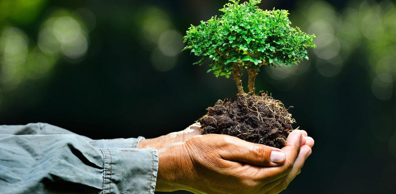 """""""Ανυπότακτο Αγρίνιο"""": το περιβάλλον ήταν, είναι και θα παραμείνει ανυπότακτο"""