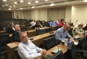 Συζήτηση για το επιχειρηματικό πάρκο στη συνεδρίαση της ΣΕΑΔΕ στο Αγρίνιο